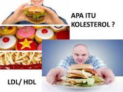 makanan kolesterol tinggi